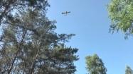 Mały samolot nad lasem