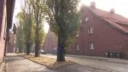 Budynki w Rudzie Śląskiej
