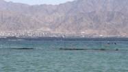 Zatoka Akaba w Izaelu
