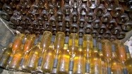Butelki wina w winnicy