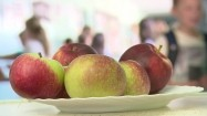 Jabłka na talerzu