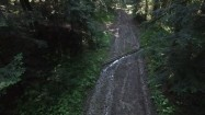 Droga przez las