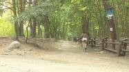 Jazda na rowerze w lesie
