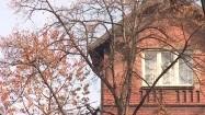 Drzewo i budynek mieszkalny