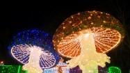 Świąteczne iluminacje - grzyby