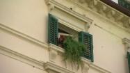 Okno z zielonymi okiennicami