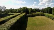 Szpalery lipowo-grabowe w nieborowskim parku