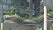 Ogrody na wieżowcu