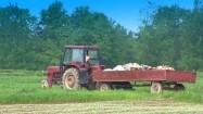 Traktor z przyczepą na polu