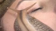 Ślimaki pełzające po twarzy