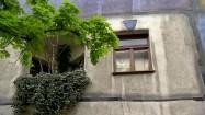 Budynek Hundertwasserhaus w Wiedniu - okno