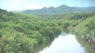 Rzeka w Ameryce Środkowej