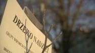 """Tabliczka z napisem """"Drzewo nadziei"""""""
