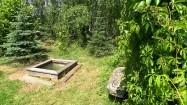 Wejście do sauny w ogrodzie