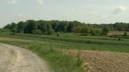 Wiejski krajobraz