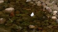 Papierowa łódka na wodzie