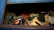 Pomidory w koszu na śmieci