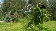 Karmnik dla ptaków w ogrodzie