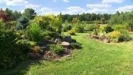 Przydomowy ogród ekologiczny