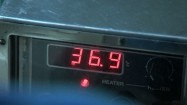 Temperatura na wyświetlaczu