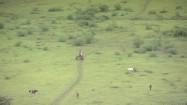 Pastwisko na Kubie