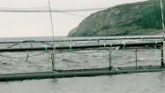 Ferma łososi w Norwegii