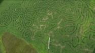 Labirynt na polu kukurydzy