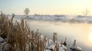 Ośnieżony brzeg rzeki