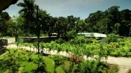 Ośrodek dla leniwców na Kostaryce