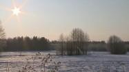 Ośnieżone pole
