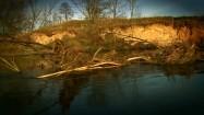 Gałęzie na rzece