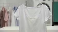 Koszulka na wieszaku