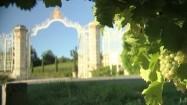 Wejście do winnicy