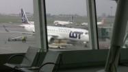 Samolot widziany przez szybę lotniska