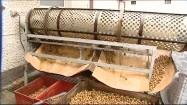 Oczyszczanie ślimaczych skorupek
