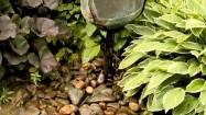 Źródełko w ogrodzie