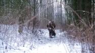 Człowiek w lesie zimą