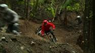 Jazda na rowerach leśną trasą
