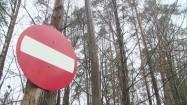Znak zakazu w lesie