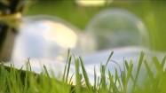 Kieliszki do wina leżące na trawie