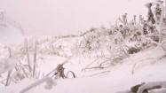 Śnieg na łące