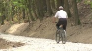 Rowerzysta jadący ścieżką w lesie