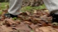 Mężczyzna spacerujący po lesie