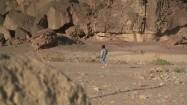 Turysta na pustyni Negew