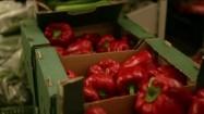 Warzywa w tekturowych skrzynkach