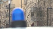 Kogut policyjny