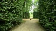 Zielone korytarze w Nieborowie