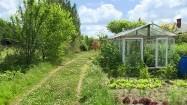 Ogród ze szklarnią