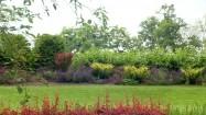 Kwiaty i krzewy w ogrodzie