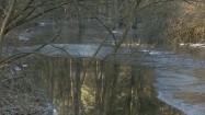Rzeka okresowa w lesie